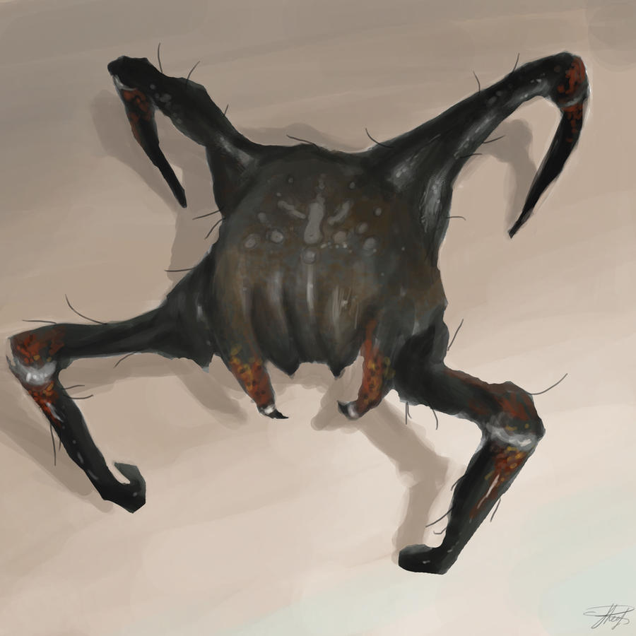 Poison head crab by ChrisJRees