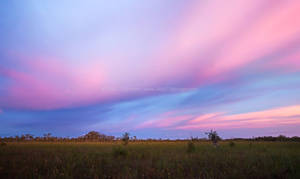 Embers in the Sky - Big Cypress Sunset