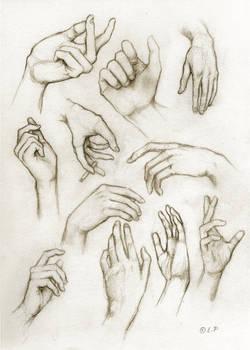 hand study by Lintsi