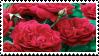 roses stamp by r0senr0tten
