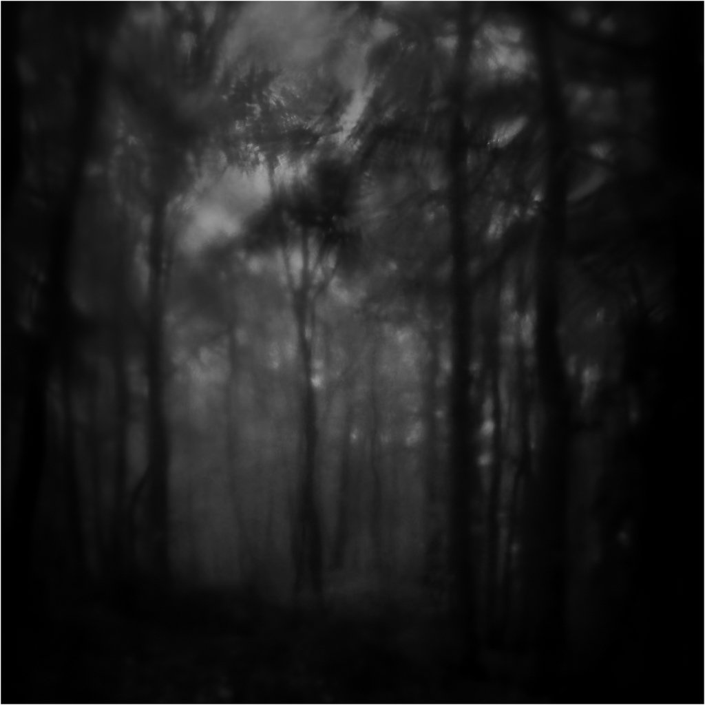 Soul of dark wood by ForrestBump