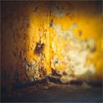 holes (2) by ForrestBump