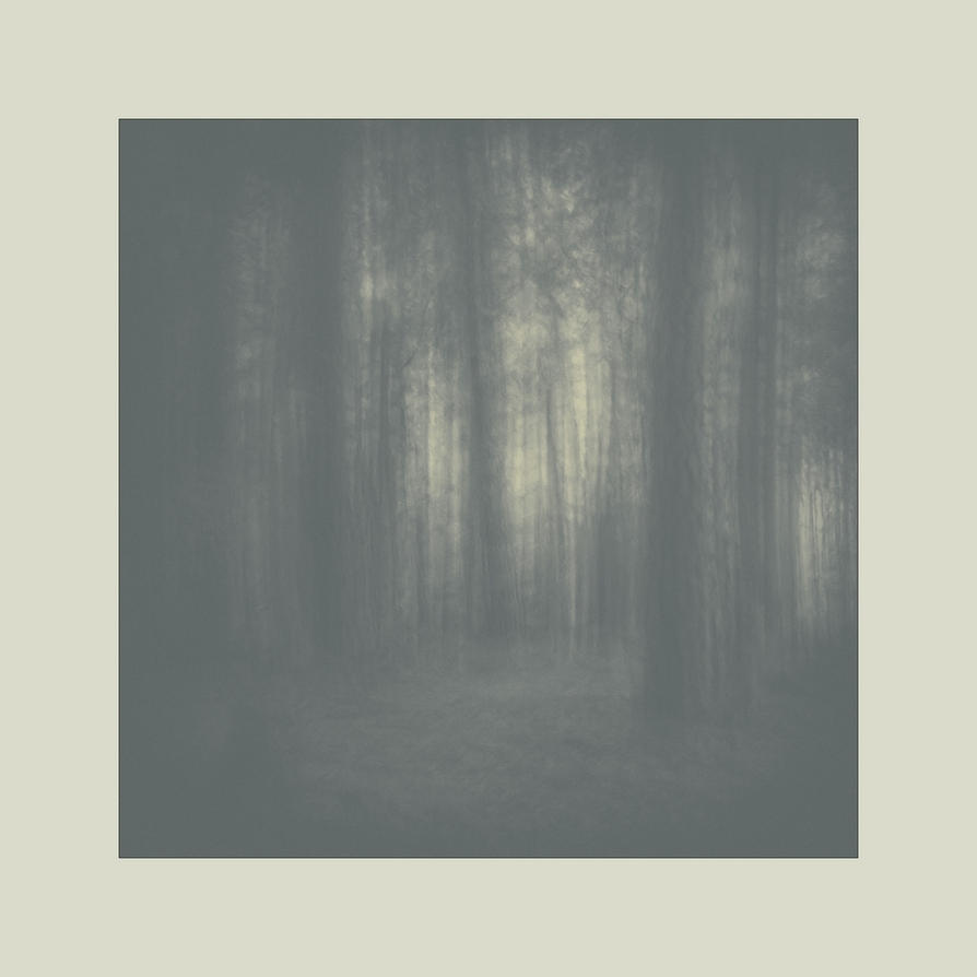 dvs164 by ForrestBump