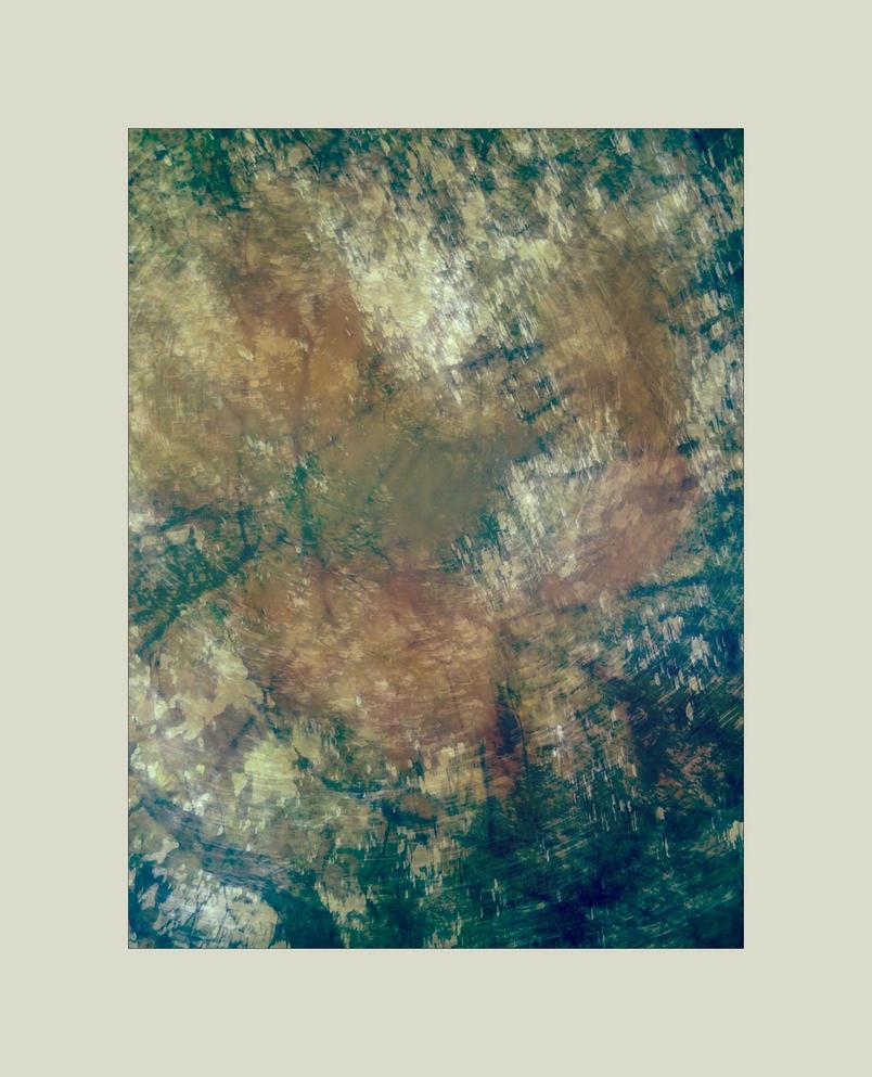 autumnal herbarium 6 by ForrestBump