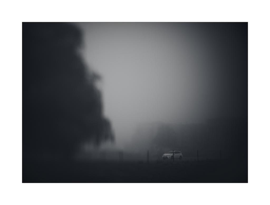 dvs201 by ForrestBump