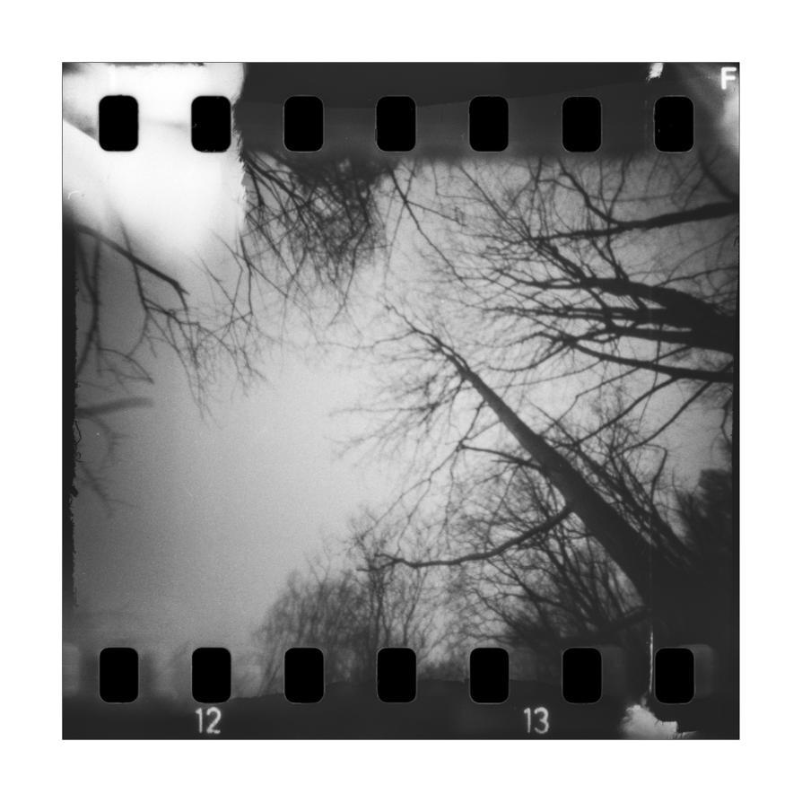 dvs255 by ForrestBump