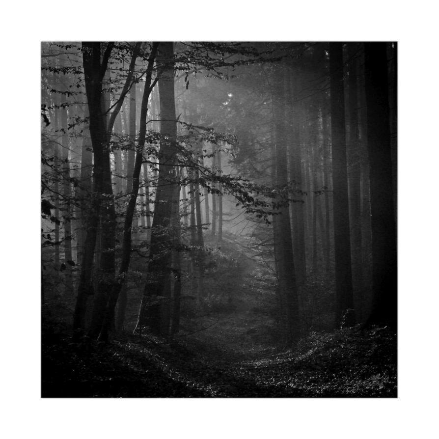 dvs294 by ForrestBump