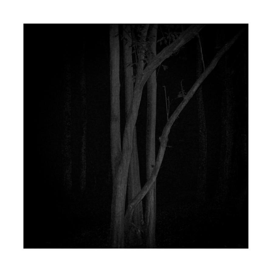 dvs361 by ForrestBump