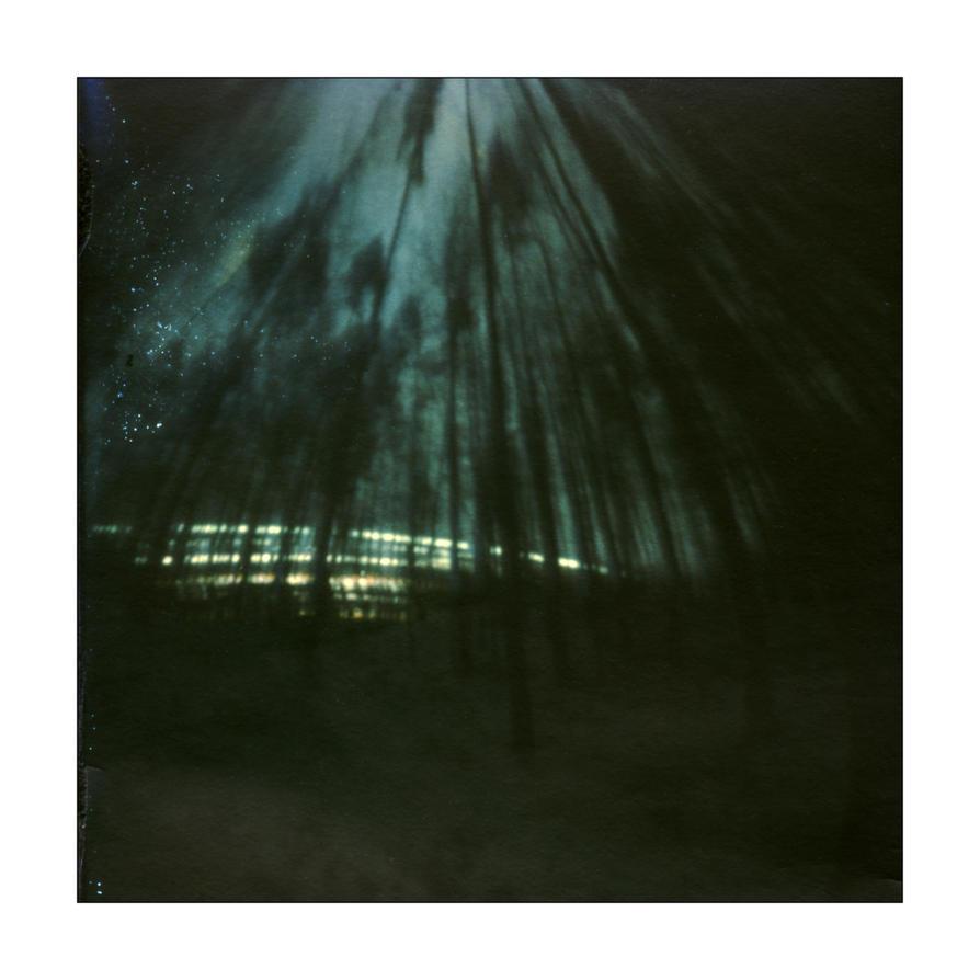 dvs363 by ForrestBump