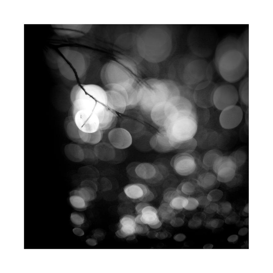 dvs381 by ForrestBump