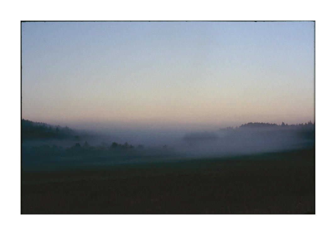 dvs398 by ForrestBump