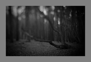 dvs416 by ForrestBump