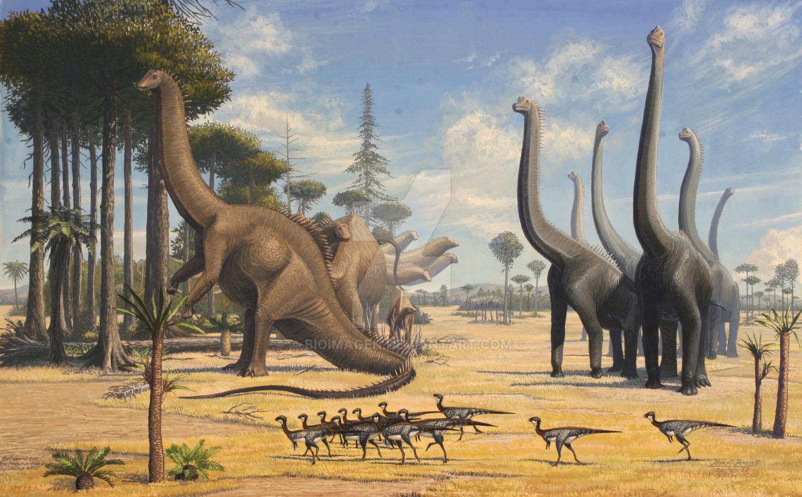 apatosaurus vs diplodocus - HD1600×991