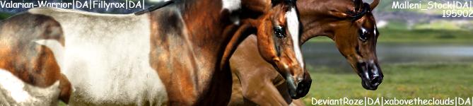 BannerHEECLUB by HorsesAreMyLife09