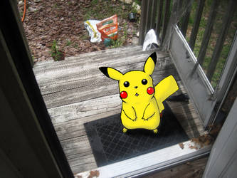 Pikachu On My Porch by RobinElyce