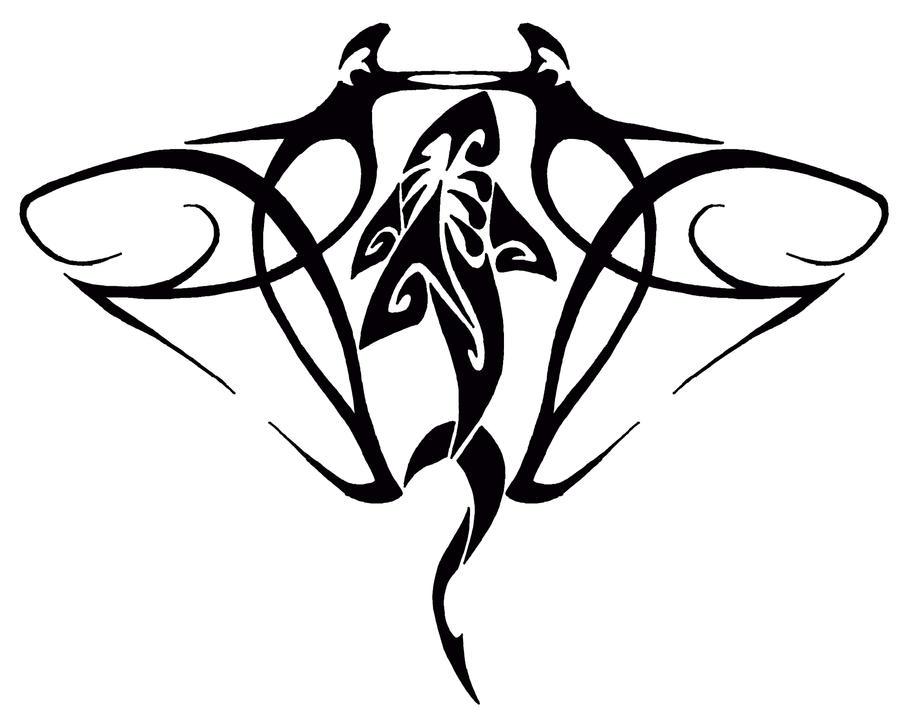 Manta Ray Drawing Manta Ray