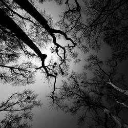 noon darkness by cenkercenker