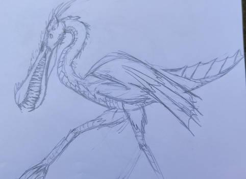 Sketches in School: Birddragon something