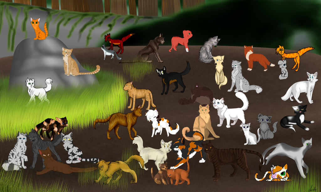 Warrior Cats Map We Came We Saw