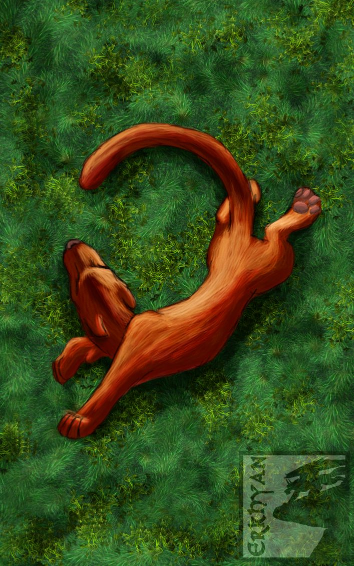 Stretching In The Grass by Erkhyan