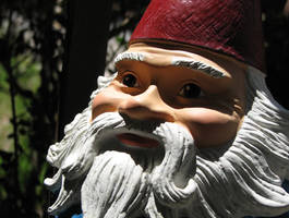 Roam With The Gnome