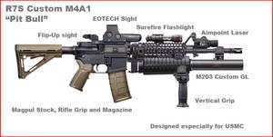 R7S Custom M4A1