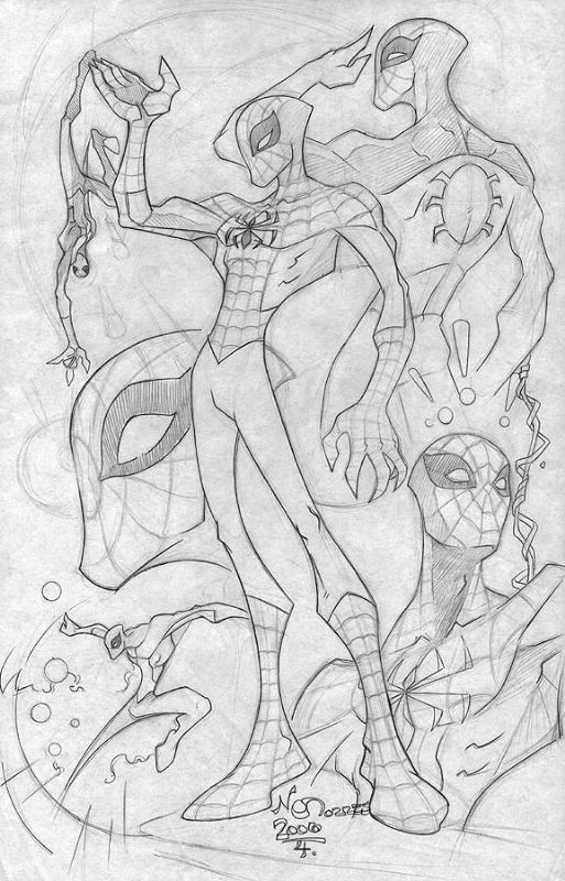 Spider Man by nctorres
