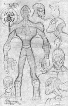 Spidey Designs