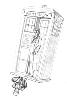 A Spider in the TARDIS