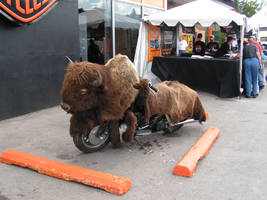 buffalo bike by ItsAllStock