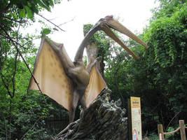 Dinosaur 5 by ItsAllStock