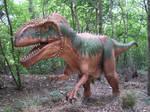 dinosaur 21