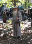 Wizard 2