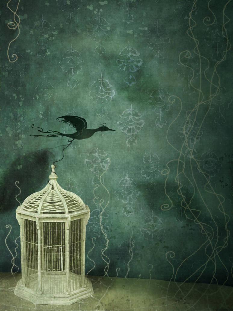 Bird cage by missdine