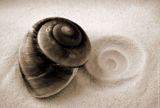 Shell and Imprint