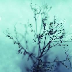 dead of winter.