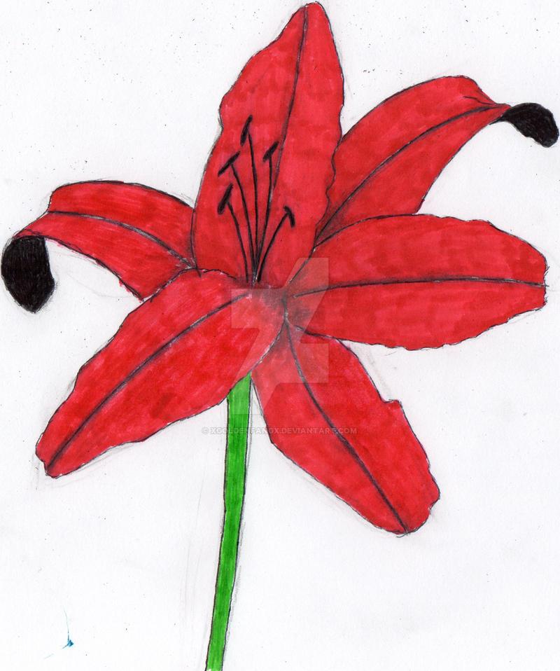 Flower by xgoldenfangx