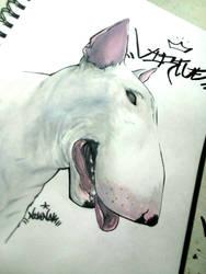 Dog Tags | Virtue