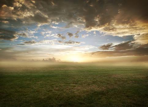 Grassy field sunset - FREE STOCK