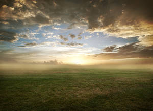 Grassy field sunset - FREE STOCK