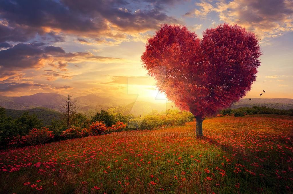 Love tree by kevron2001