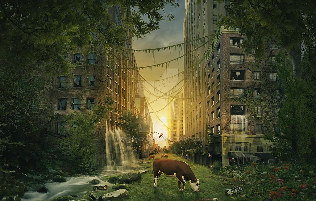 Future farm land by kevron2001