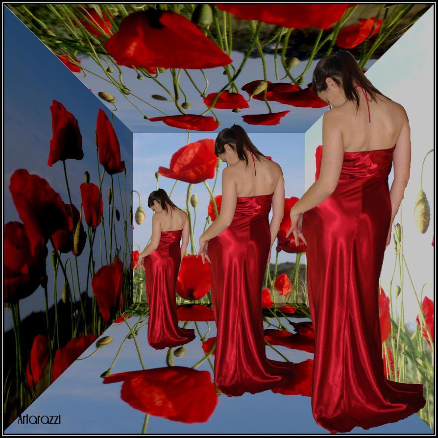 Red Poppy by Godiva500