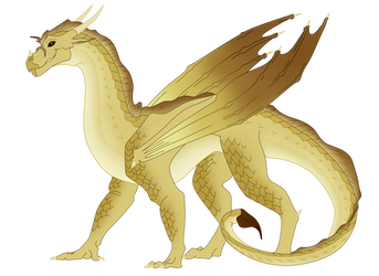Wings of Fire ~ Qibli