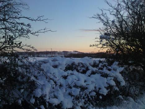 Winter Stock 7