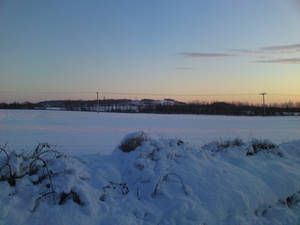 Winter Stock 8