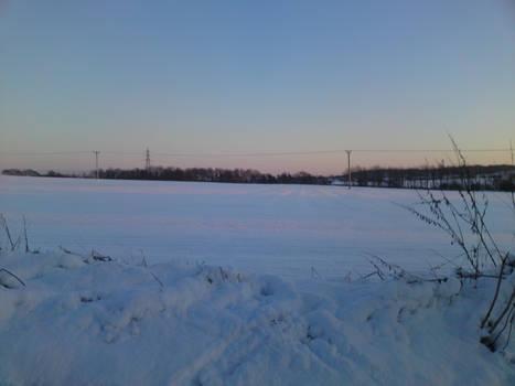 Winter Stock 9
