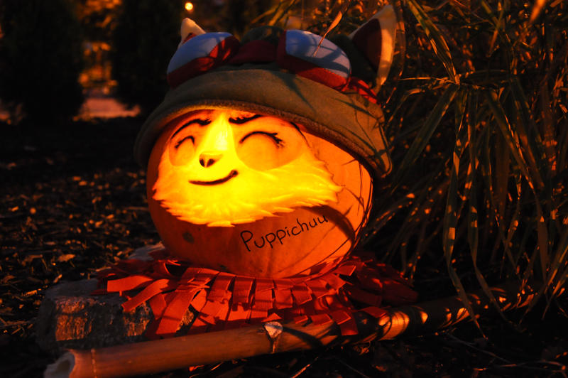 Teem O Lantern Submission by puppichu