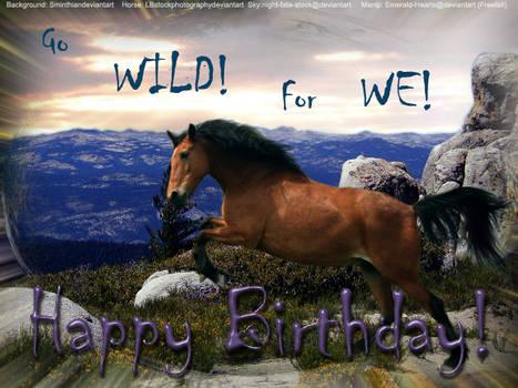 Happy birthday Wild Equines