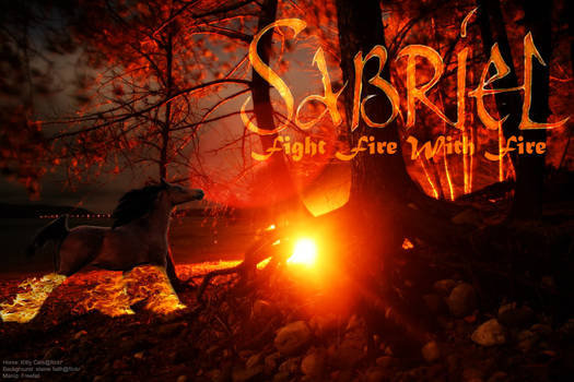 Sabriel Fire Horse